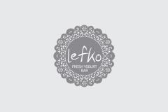 logo-lefko